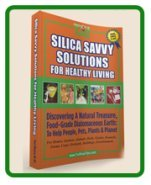 Silica Savvy Solutions
