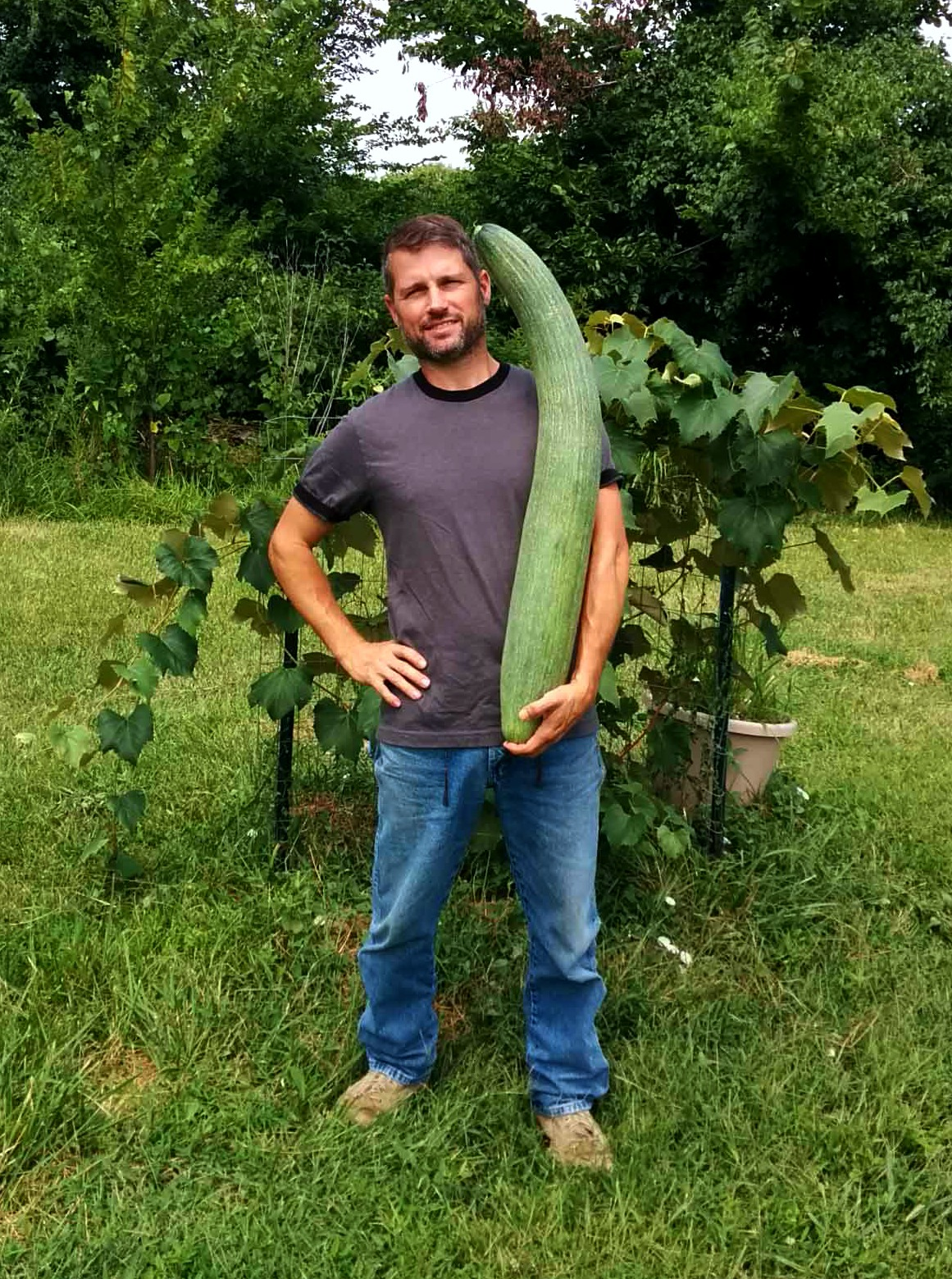 Giant cucumber from The Worm Farming Revolution book