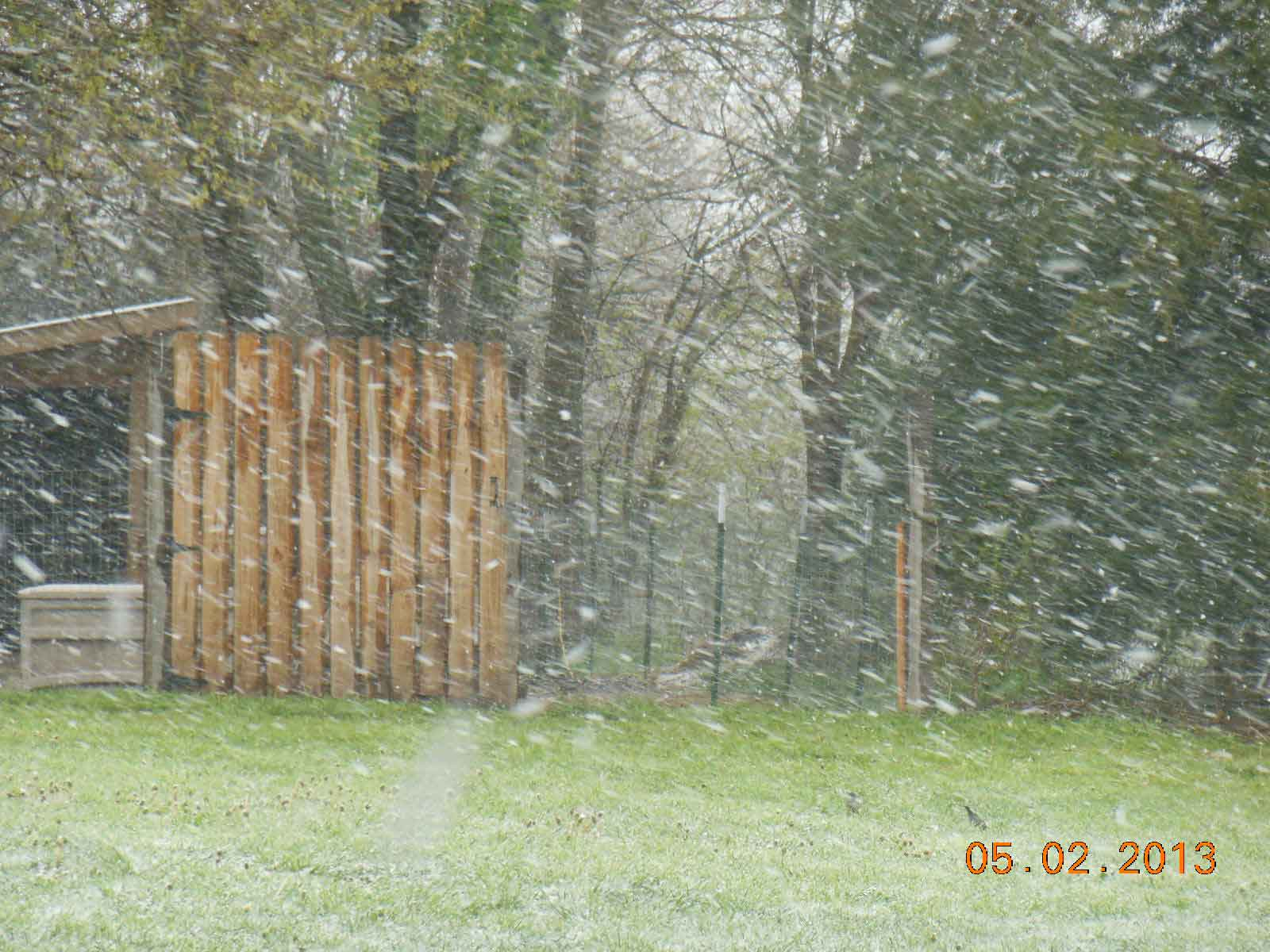 Snow Storm In May