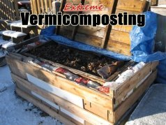 Extreme Vermicomposting