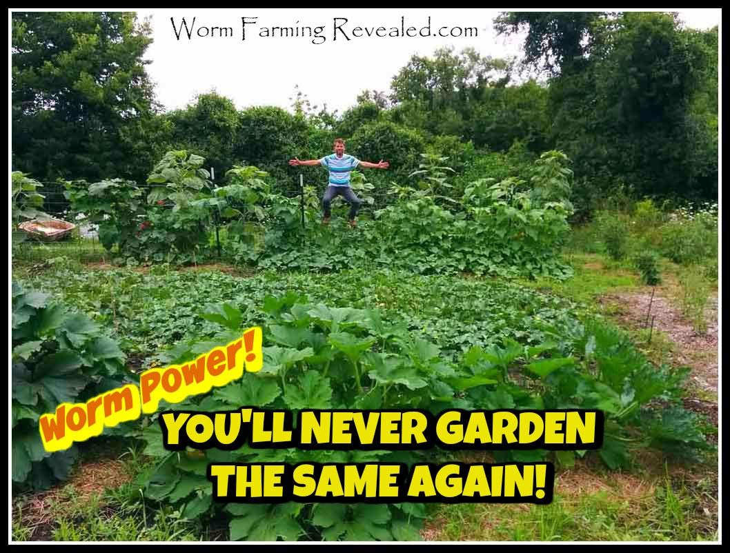You'll Never Garden the Same Again!