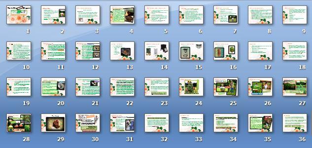 The Worm Farming 36 Slide Presentation