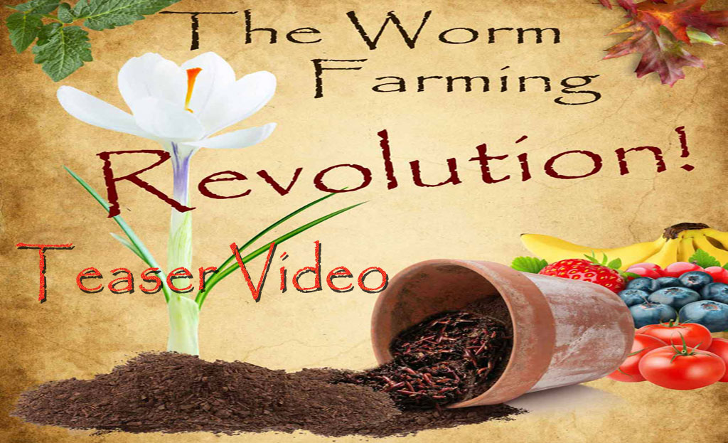 Kick Starter Worm Farming Video