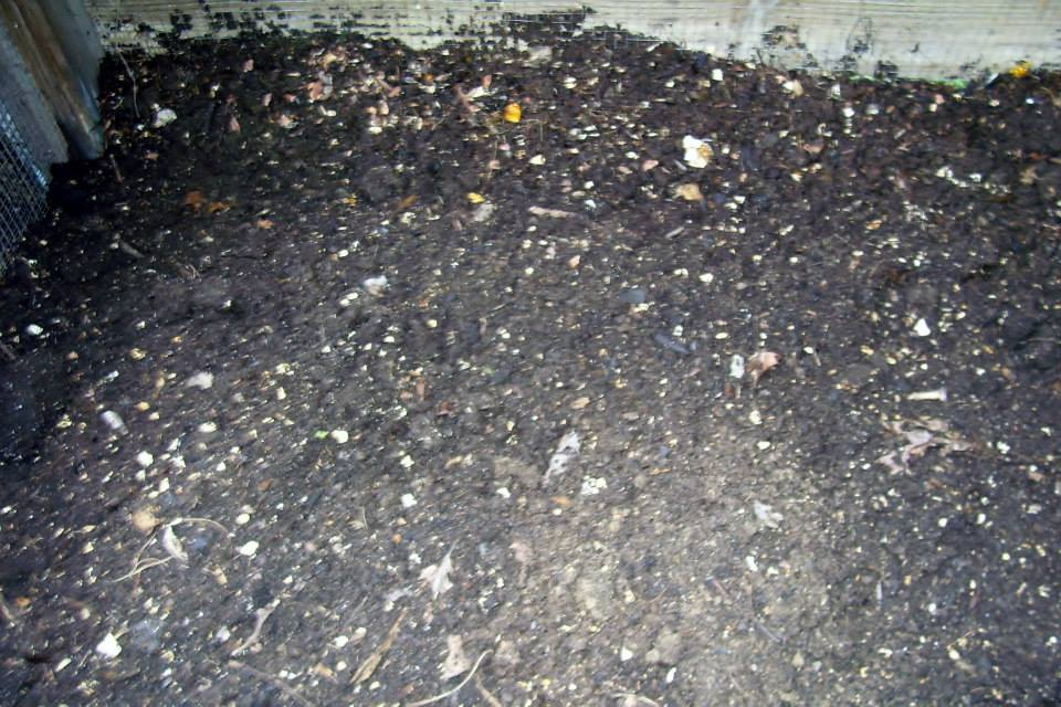 Roberts Flow Through Outdoor Vermicompost SystemPic 0013