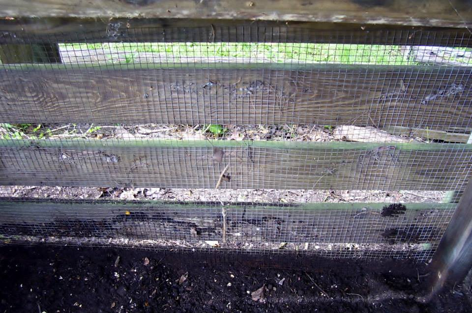 Roberts Flow Through Outdoor Vermicompost SystemPic 0003