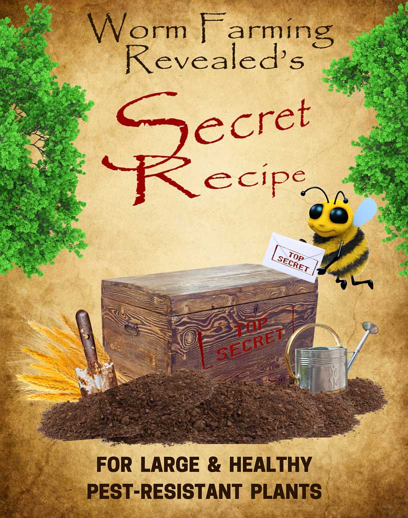Secret Recipe for Large, Healthy, & Pest Resistant Plants