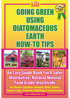 Going Green Using Diatomaceous Earth How-To Tips.