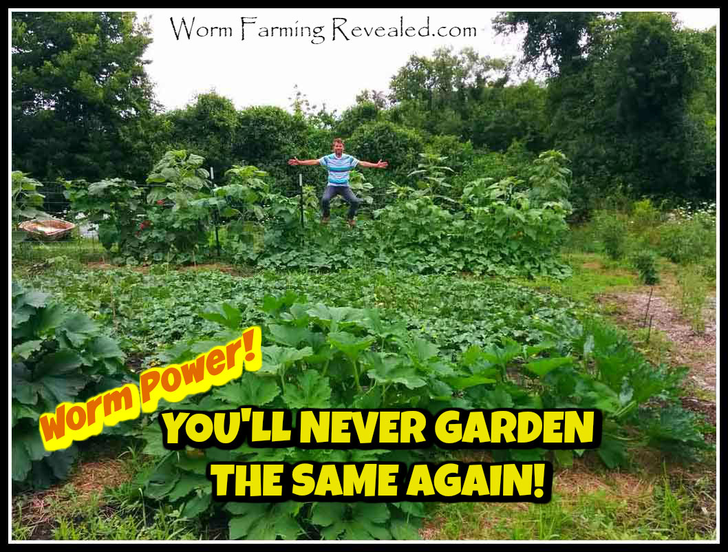 You'll Never Garden the Same Again!