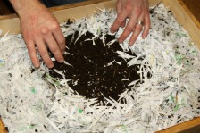 Compost Between Paper Layers