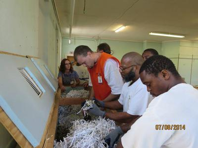 Worm Farming in Correctional Facilities Hannah 3