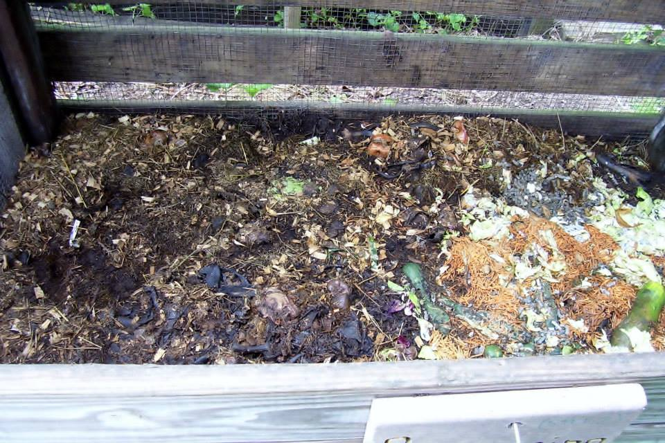 Roberts Flow Through Outdoor Vermicompost SystemPic 0006a